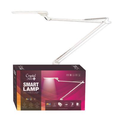 CN Smart led table lamp